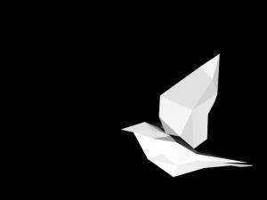 bird2_0087