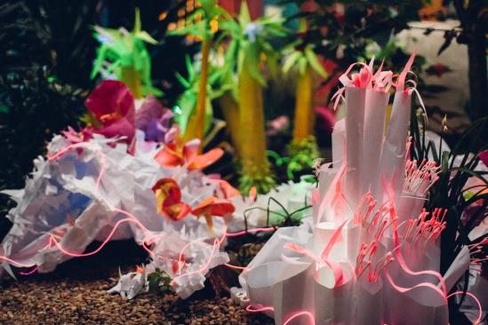 Robin bird's paper plant installations.